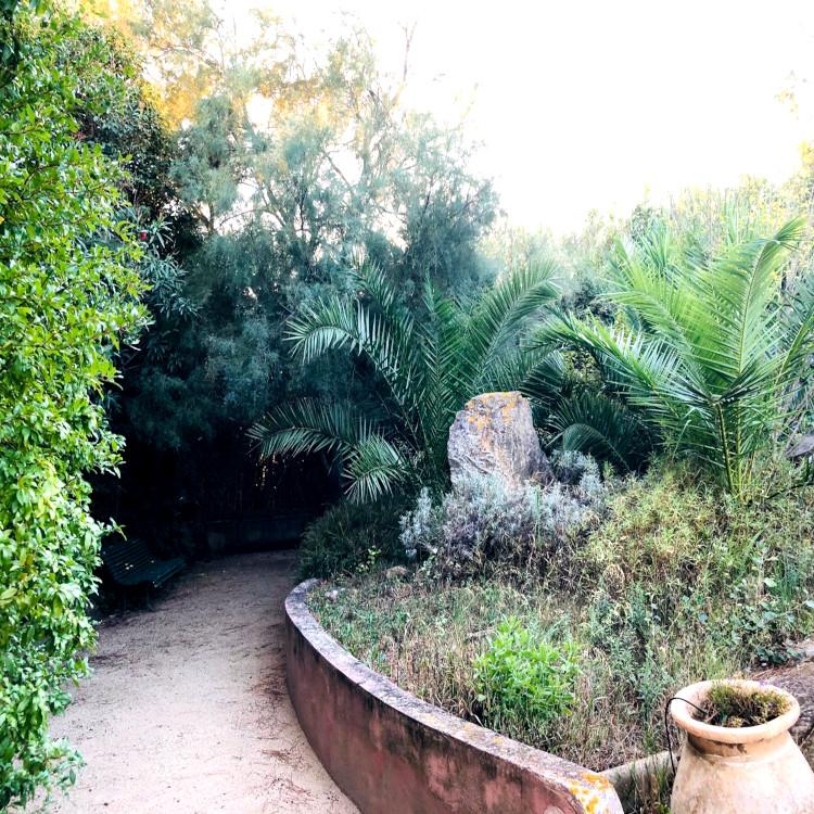 Jalan kecil di pekarangan