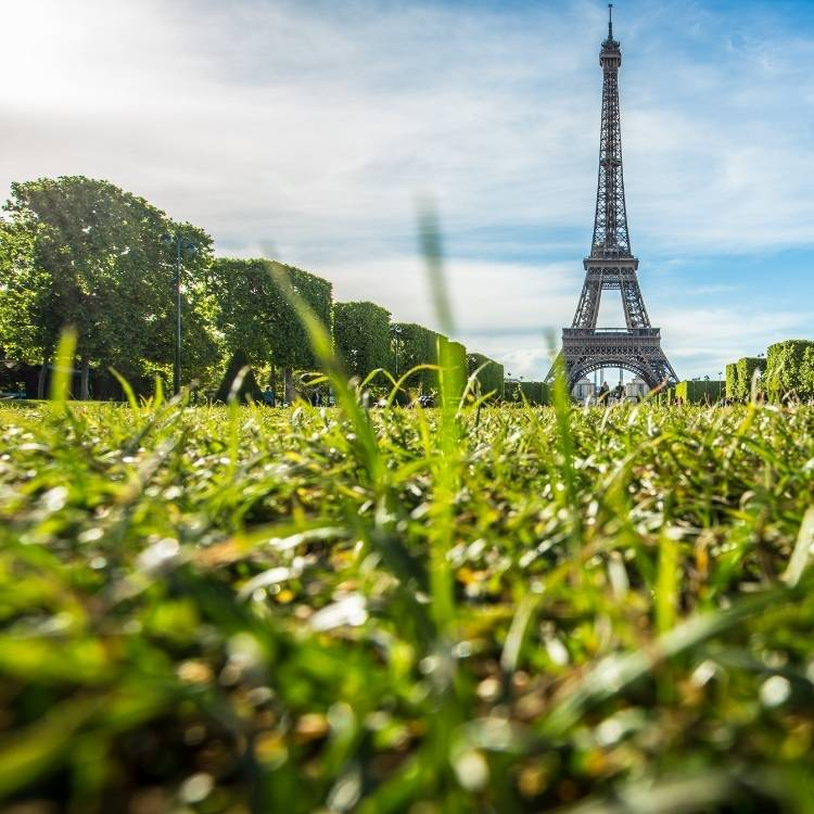 Pertanian Urban di Atap di Kota Besar Prancis